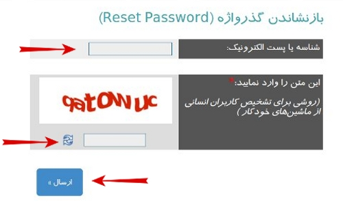 domain-ir-login