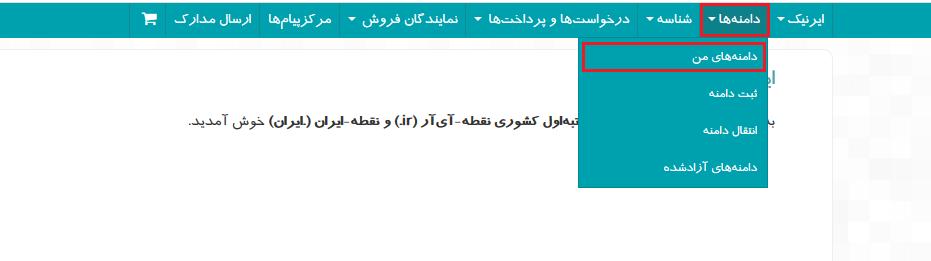 تنظیم دی ان اس دامنه آی آر