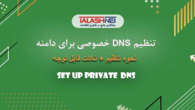 تنظیم DNS اختصاصی دامنه ملی و بین المللی